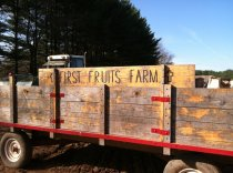 wagon at first fruits farm